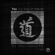 natureboyrd-tao